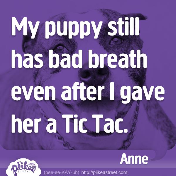 Things Kids Say: Dog Breath