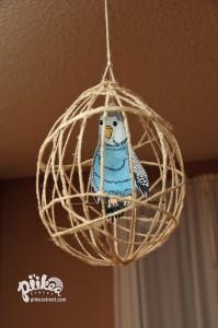 Bird & Cage Main