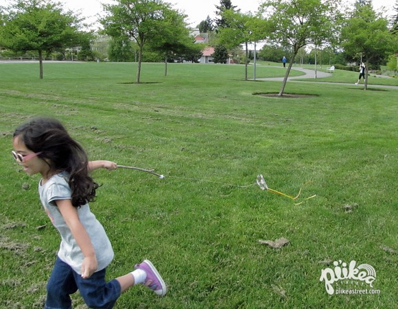 Mini Kite Play